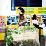 Exposição de rochas e sementes